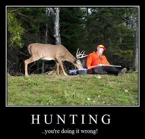 Hunting..english jokes
